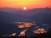 【2】水の張った田んぼと夕陽